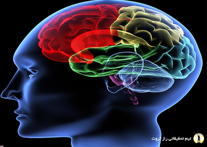 تاثیر خواب بر عملکرد مغز
