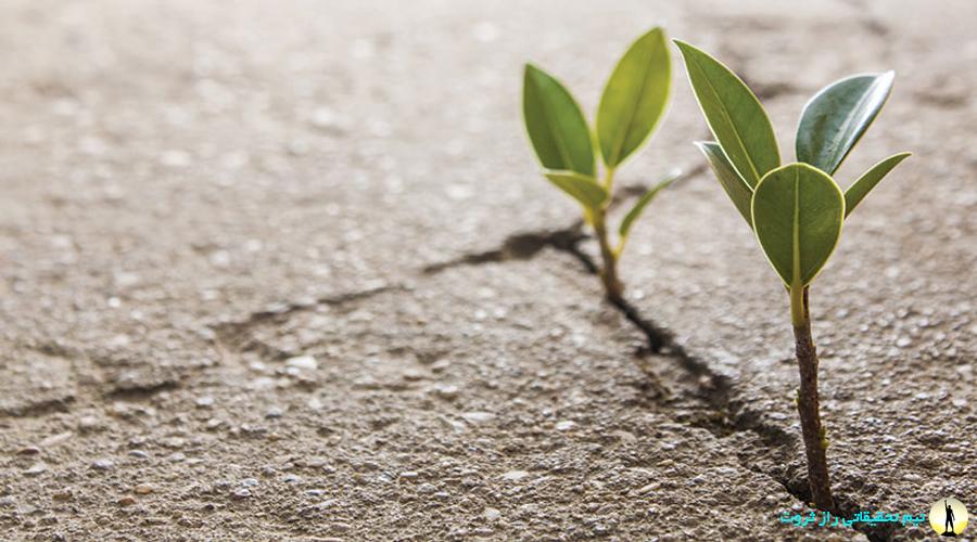 راههای تقویت امید به زندگی