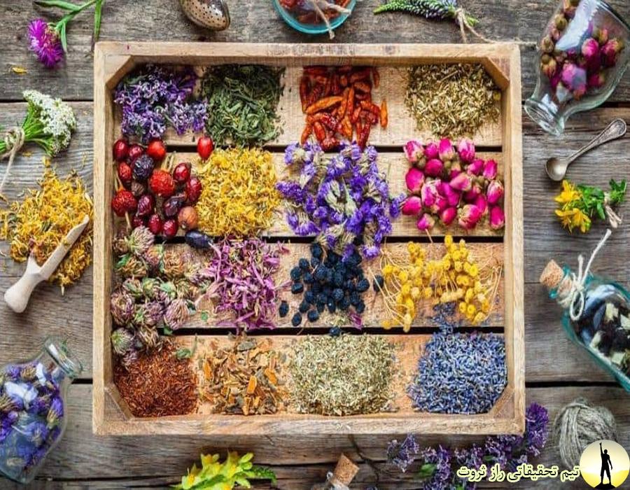 طب سنتی و طب اسلامی و انواعش