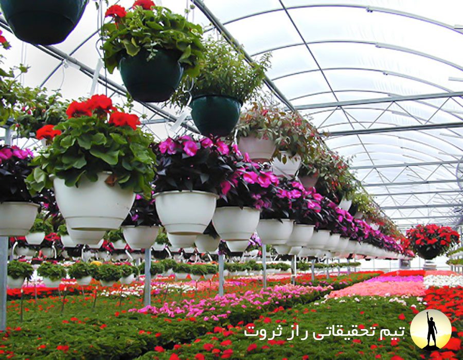 پرورش گل های زینتی