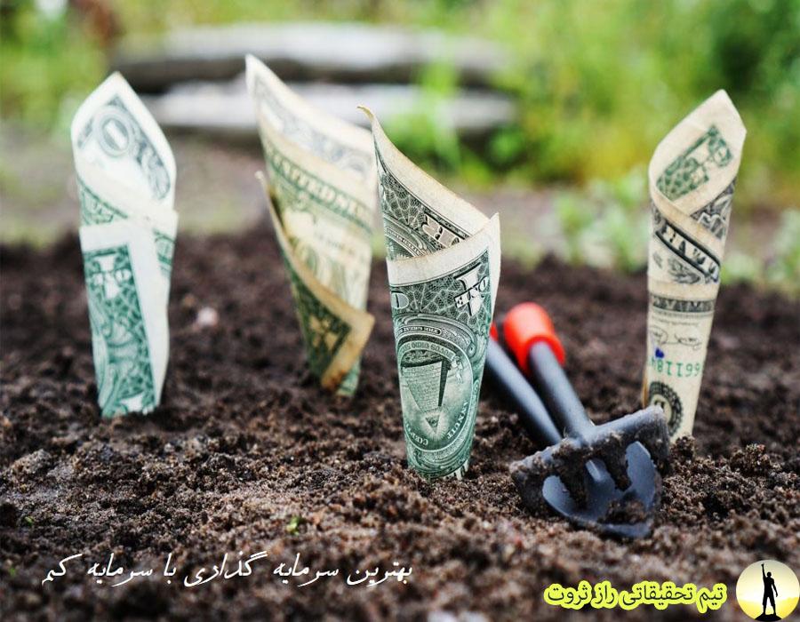 ایده سرمایه گذاری با پول کم